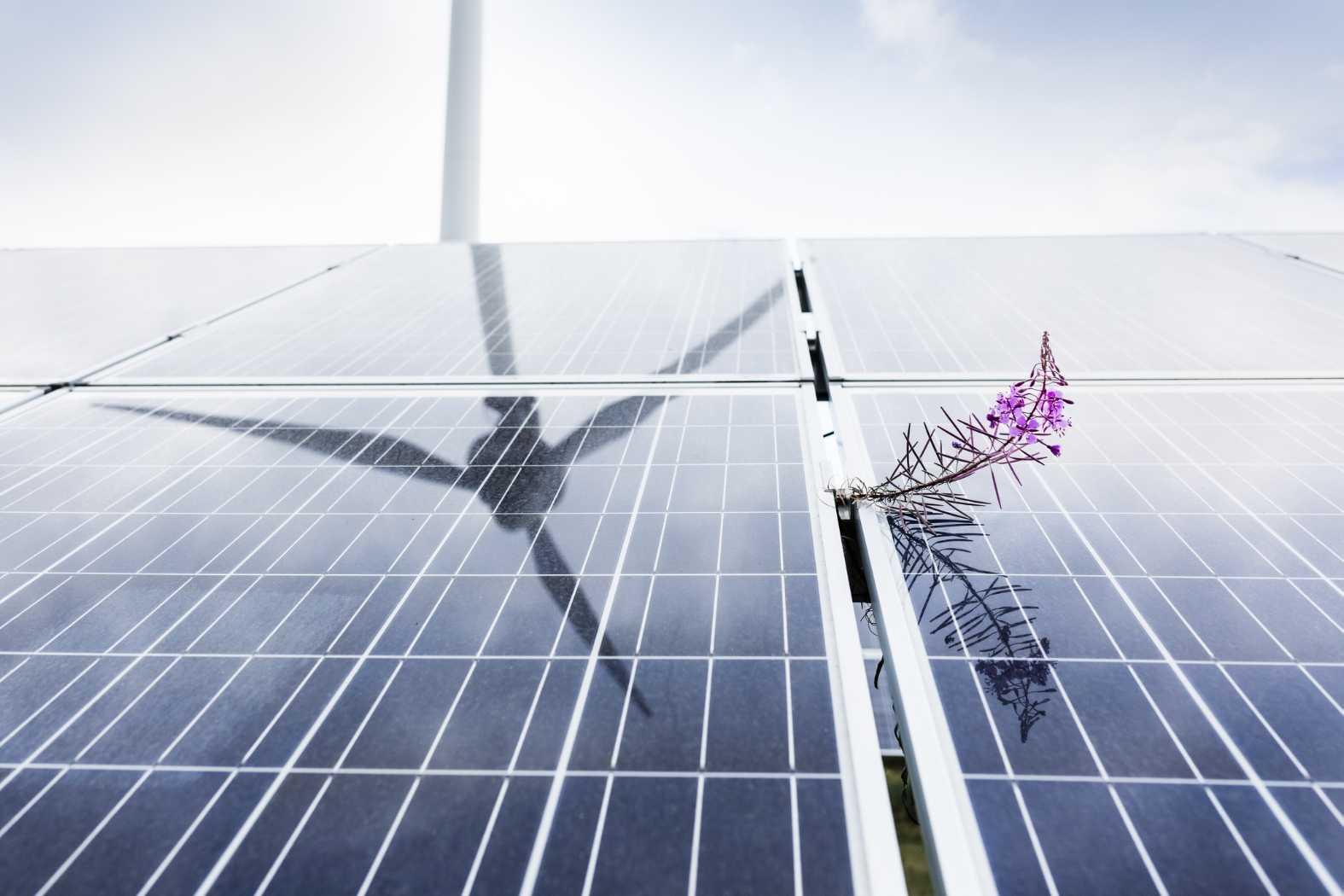 E.ON och Trianon skapar omställning med mer förnybar energi 1