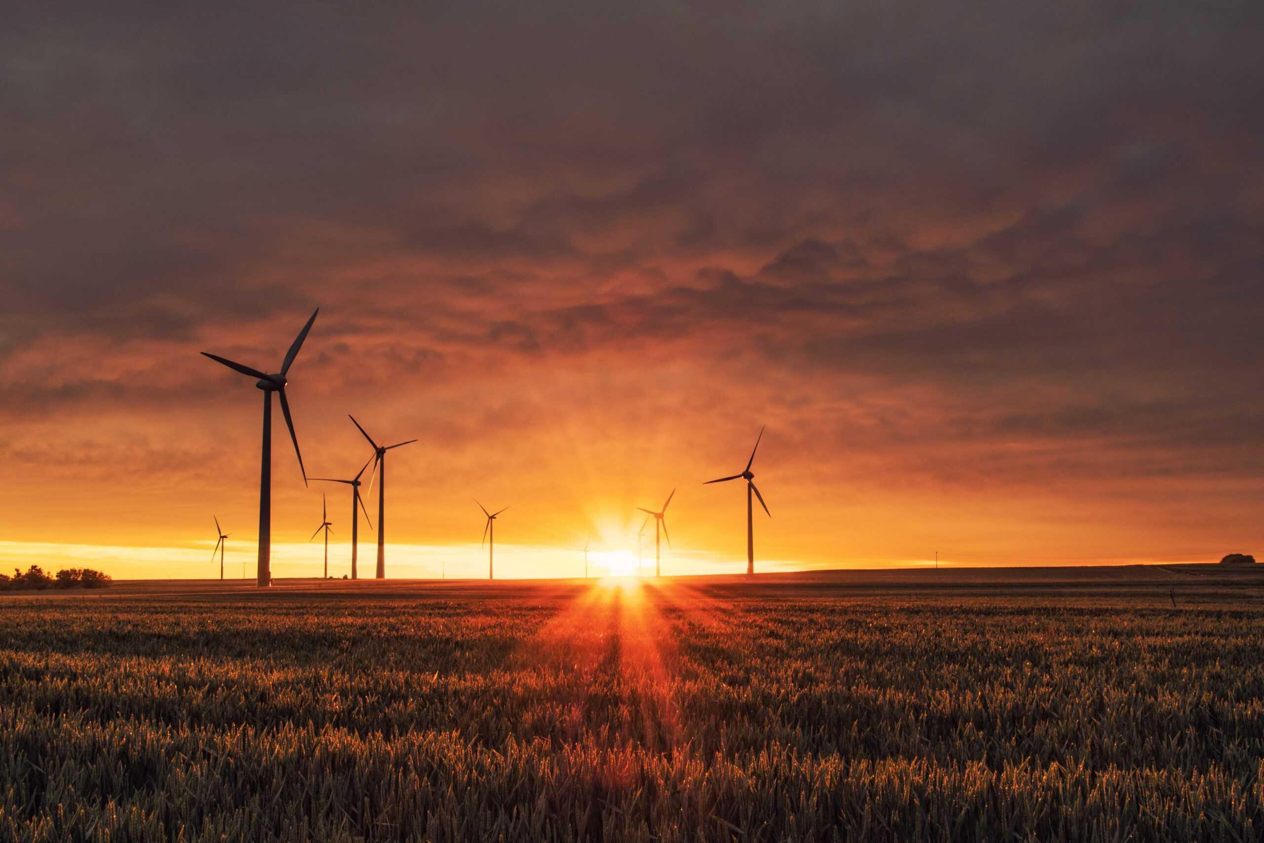 Ny undersökning: Förnybar energi är vanligare än vad allmänheten tror 1
