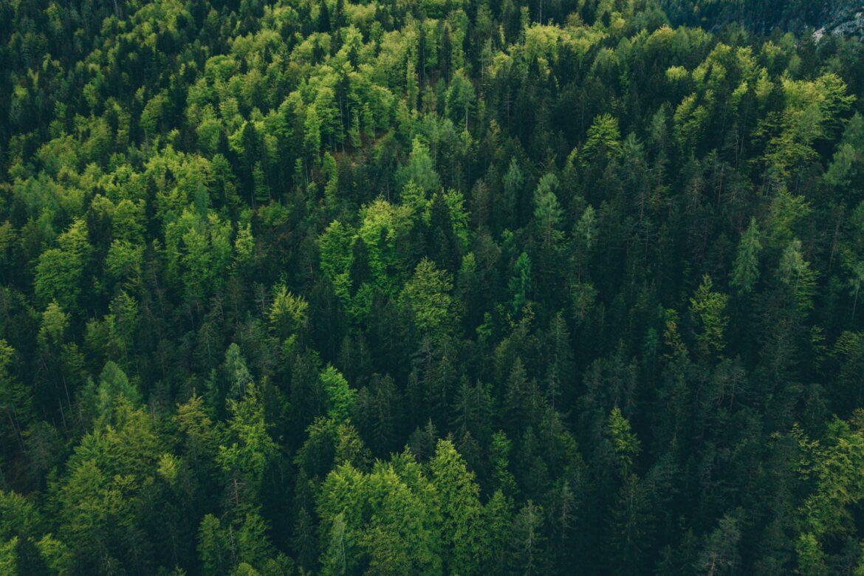 Miljöövervakning med IoT