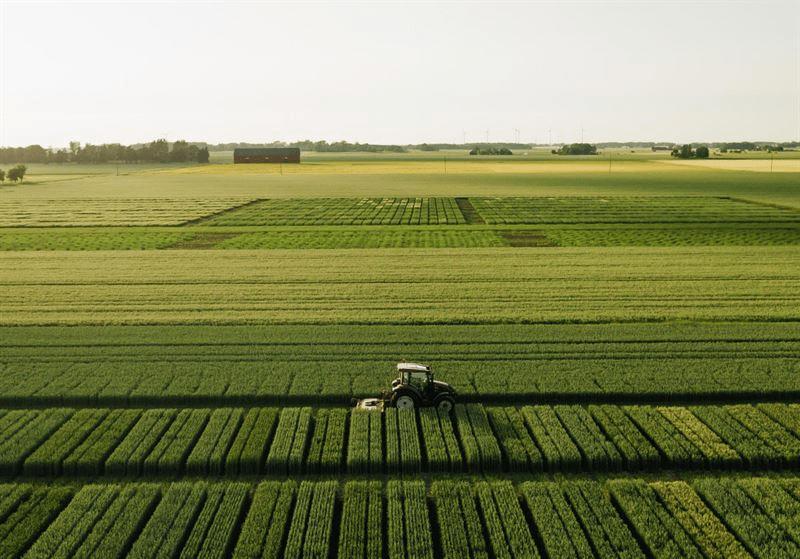 Paulig och Lantmännen i nytt samarbete för ett mer hållbart jordbruk