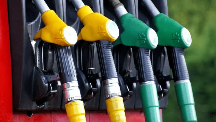 Samverkan mellan elektrifiering och biodrivmedel