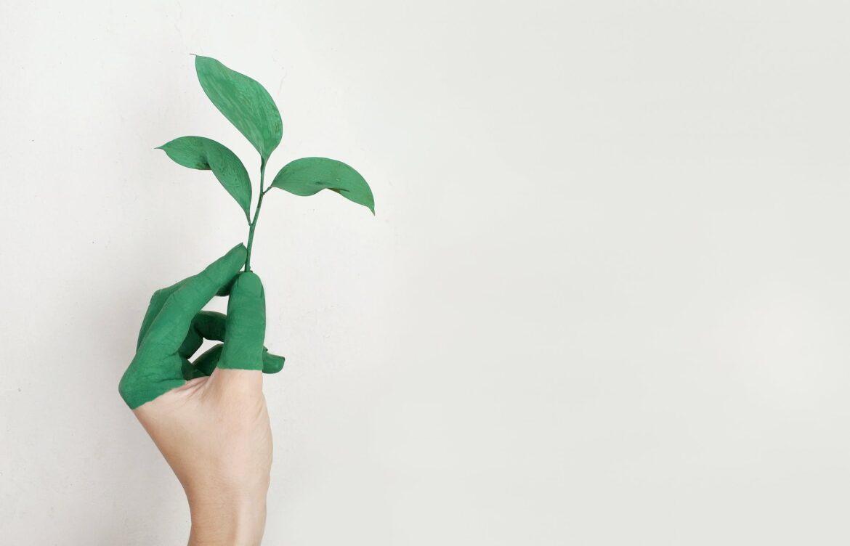 Lexmark planerar bli koldioxidneutral till 2035