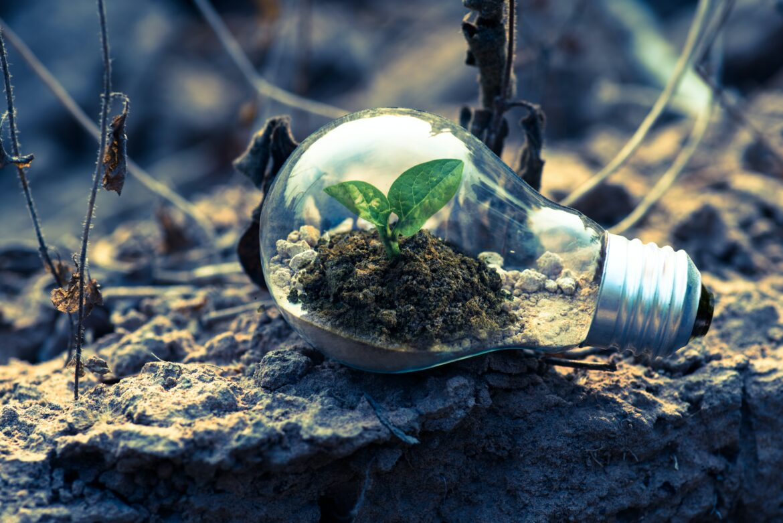 Oktas elkonsumtion 100 procent förnybar